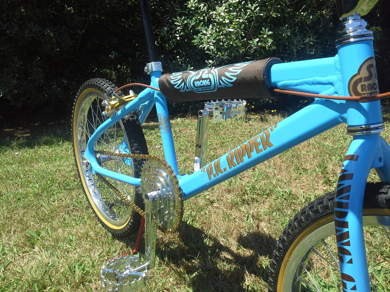http://uploads.bmxmuseum.com/user-images/146849/image3888