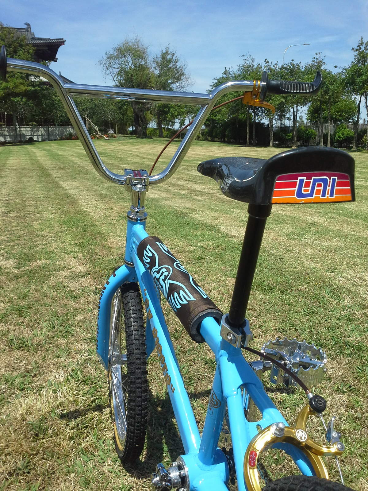 http://uploads.bmxmuseum.com/user-images/146849/image3925