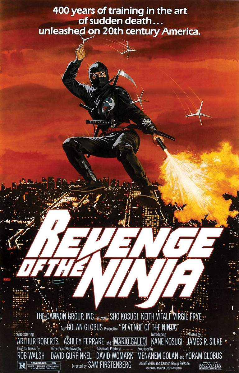 http://uploads.bmxmuseum.com/user-images/36359/revenge-of-the-ninja-poster5794f0e7a6.jpg