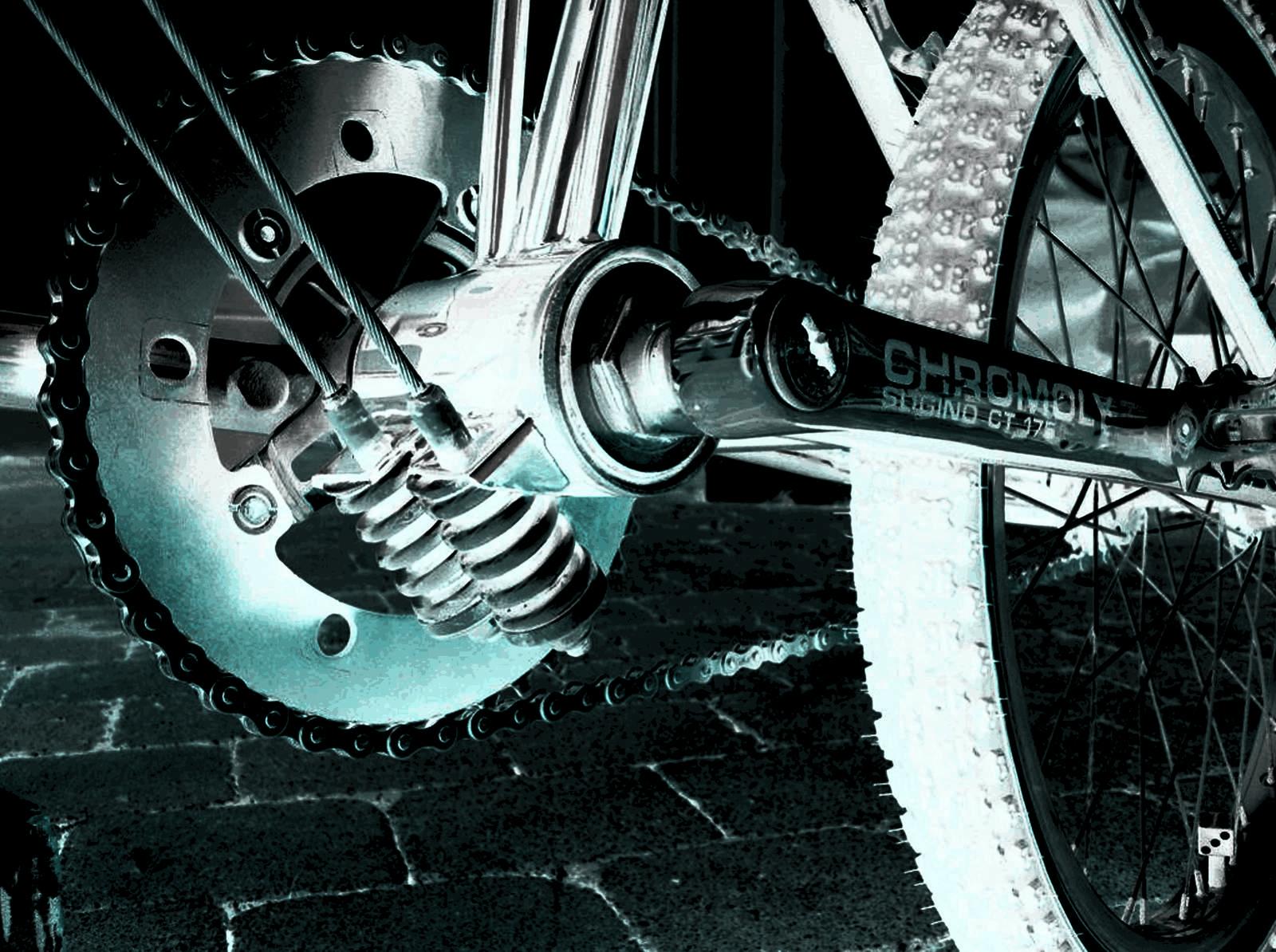 http://uploads.bmxmuseum.com/user-images/37062/slingshot5bcf5f313c.jpg