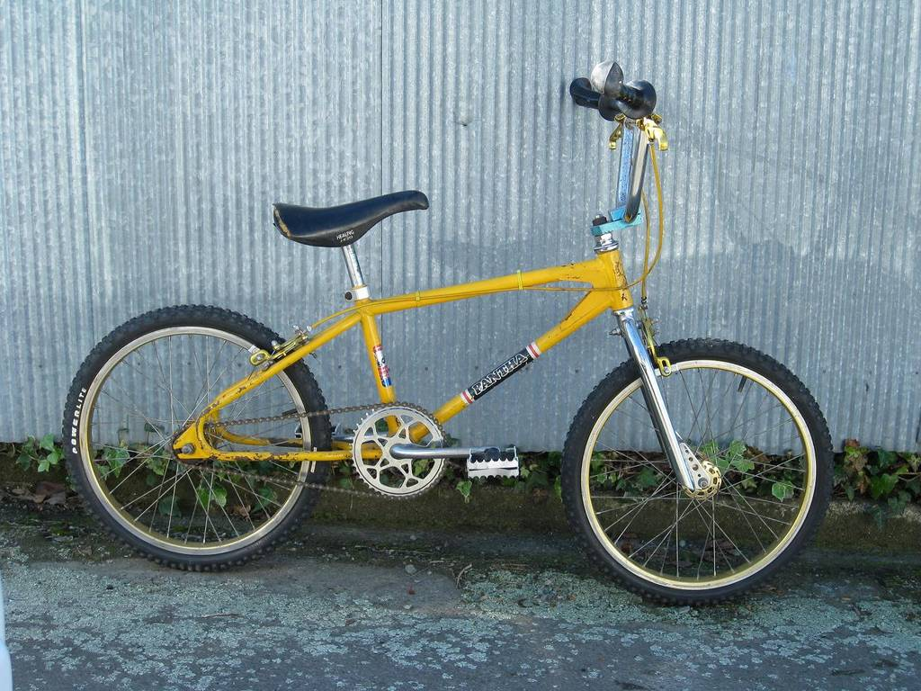 http://uploads.bmxmuseum.com/user-images/41816/picture_0251_blowup5b98390824.jpg