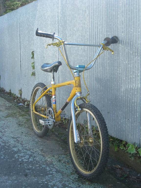 http://uploads.bmxmuseum.com/user-images/41816/picture_0261_blowup5b6ebfe1e9.jpg