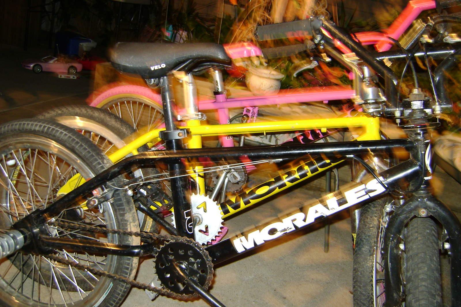 http://uploads.bmxmuseum.com/user-images/6905/bikes-freestyle-0225968fa8c44.jpg