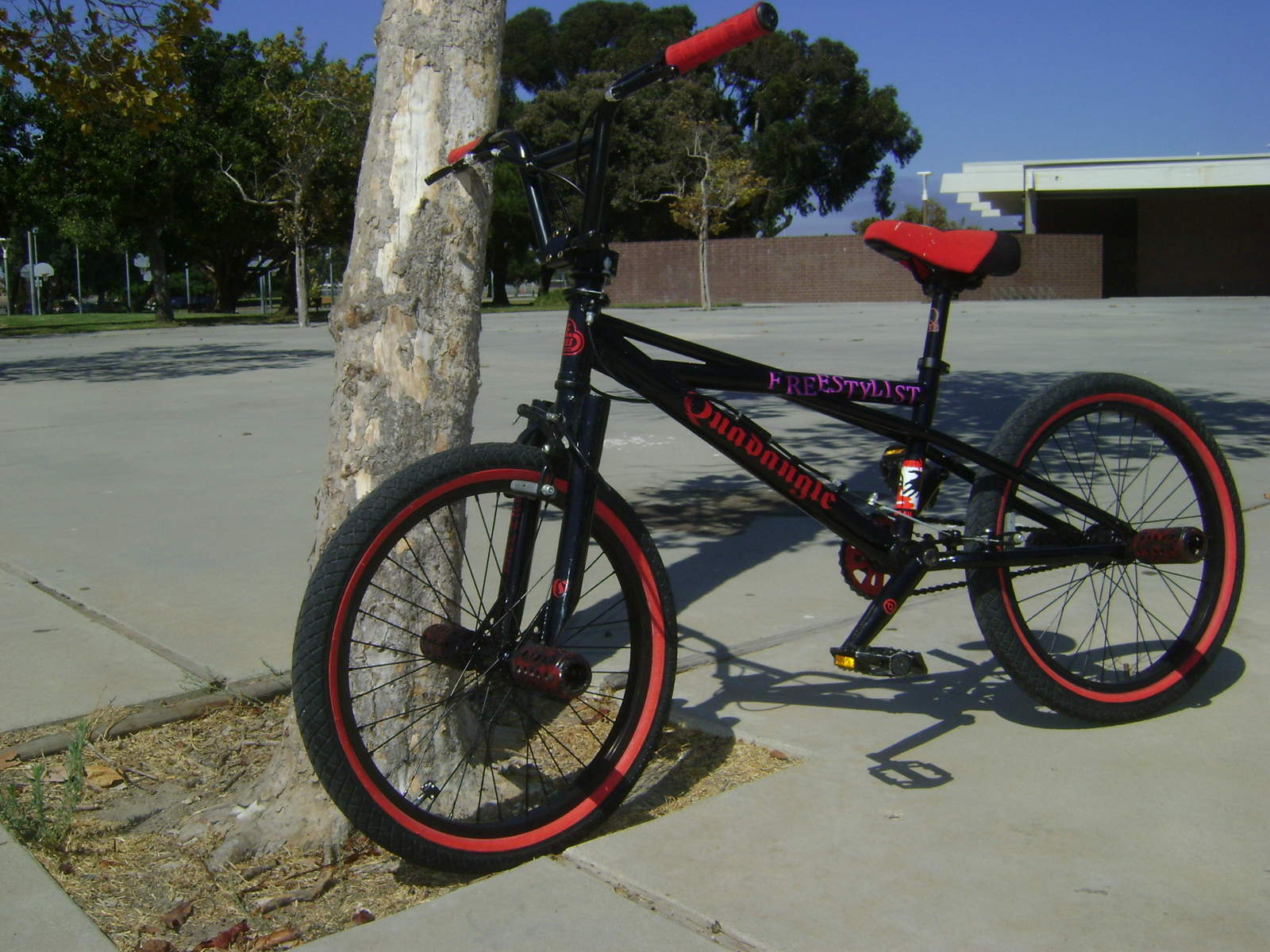 http://uploads.bmxmuseum.com/user-images/6905/dsc000275becac1b25.jpg
