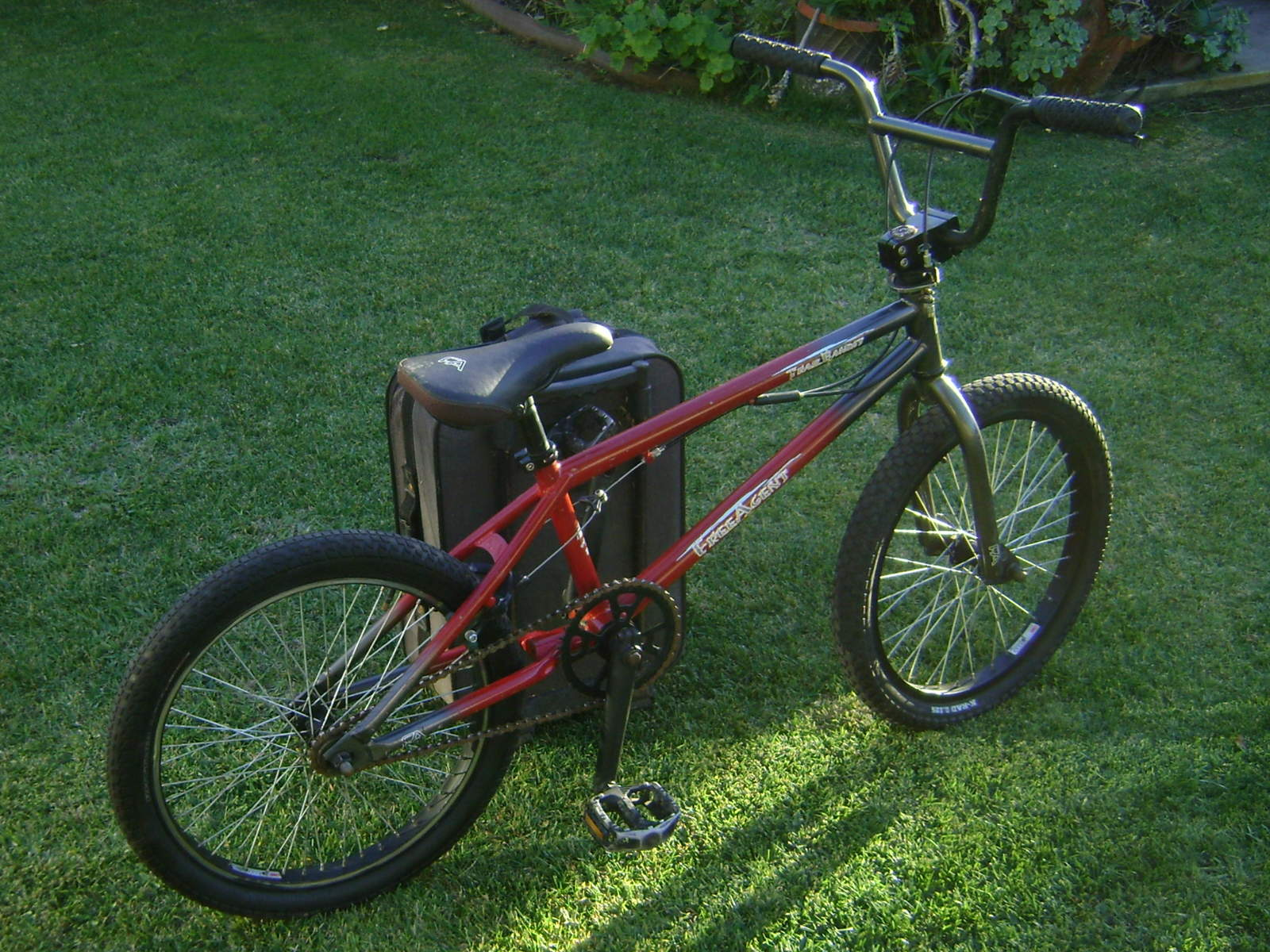 http://uploads.bmxmuseum.com/user-images/6905/dsc000825877902c81.jpg