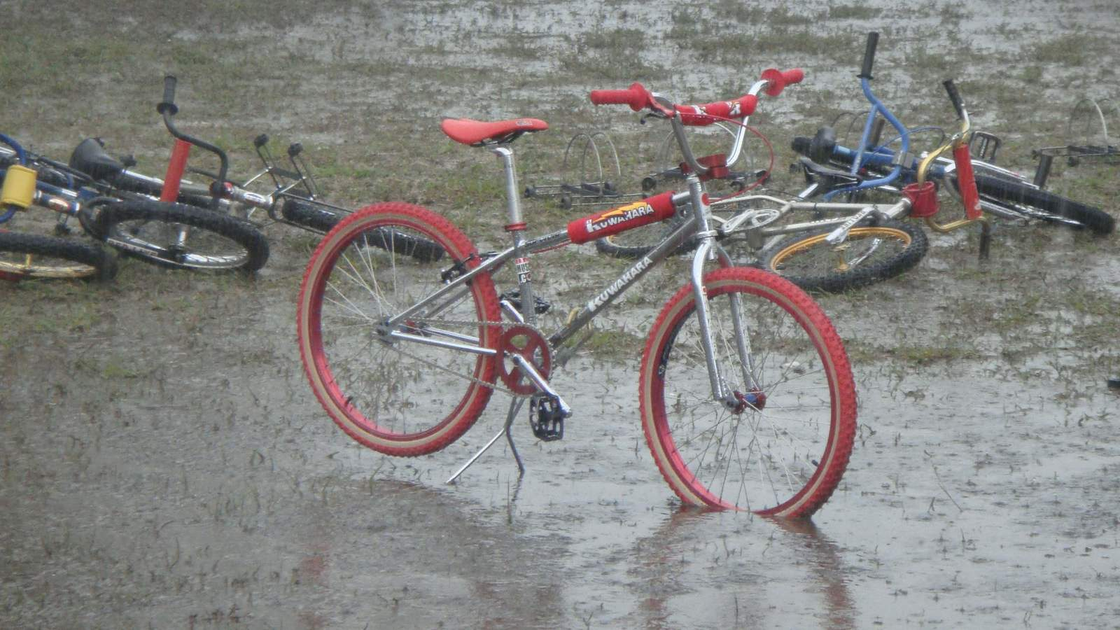 http://uploads.bmxmuseum.com/user-images/8623/411773_3296271960119_2052234042_o58e43c8be7.jpg